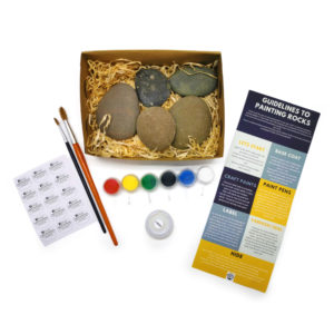 Rock Painting Starter Kit